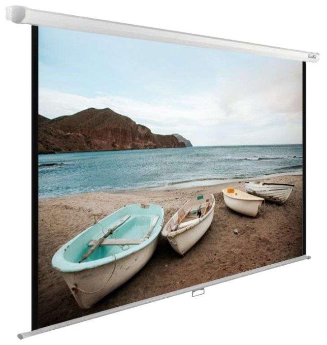 Рулонный матовый белый экран cactus WallExpert CS-PSWE-220x138-WT