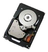 Жесткий диск IBM 600 GB 49Y2004 — купить по выгодной цене на Яндекс.Маркете
