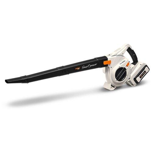 Фото - Аккумуляторный садовый пылесос Daewoo Power Products DABL 6040Li пылесос автомобильный daewoo power products davc100 черный оранжевый