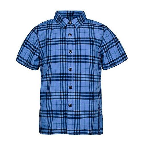 цена Рубашка Burberry размер 140, синий онлайн в 2017 году