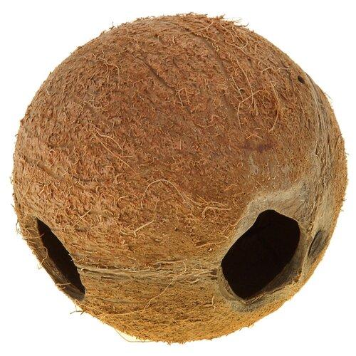 Грот JBL Cocos Cava 1/1 L 12.5x13x12.5 см коричневый