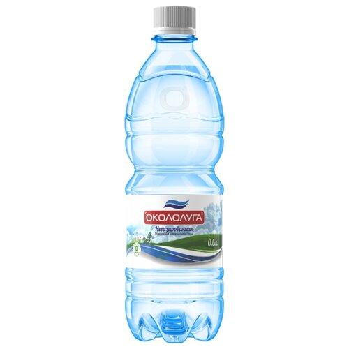 Вода минеральная Окололуга негазированная, пластик, 0.6 л