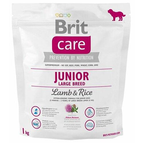 Сухой корм для щенков Brit Care ягненок с рисом 1 кг (для крупных пород) корм сухой наша марка для щенков крупных пород с мясом цыпленка и рисом 0 5 кг