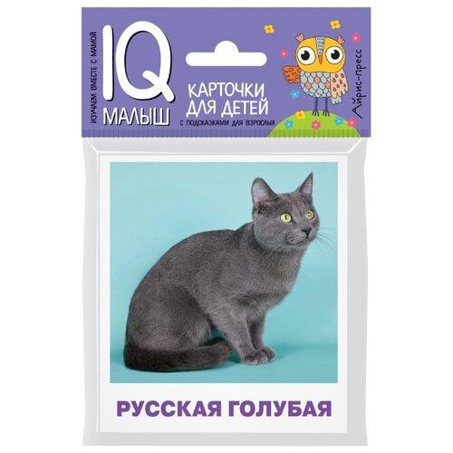 Купить Малунова М.В. Умный малыш. Породы кошек. Набор карточек для детей , Айрис-Пресс, Учебные пособия