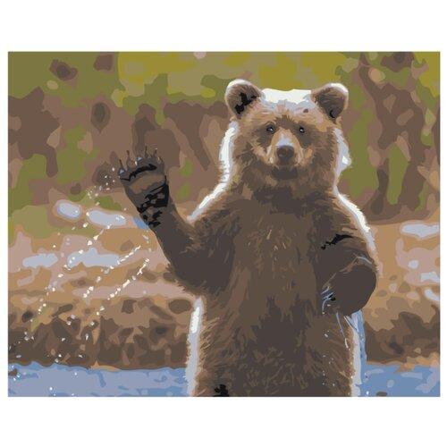 Купить Медведь машет лапой Раскраска картина по номерам на холсте Z-AB437 40х50, Живопись по номерам, Картины по номерам и контурам