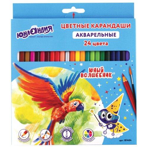 Купить Юнландия Карандаши цветные Юный волшебник 24 цвета (181404), Цветные карандаши