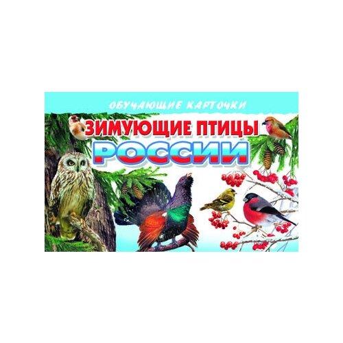 Купить Зимующие птицы России, Литур, Учебные пособия