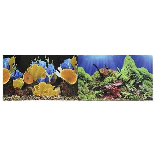 Пленочный фон Prime Морские кораллы/Подводный мир двухсторонний 60х150 см