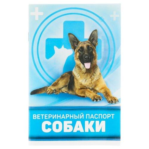 Ветеринарный паспорт Сима-ленд Для собаки 10.3 см