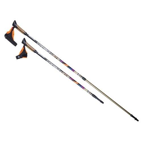 Палки для скандинавской ходьбы со сменными комплектующими US Medica Carbon GTS черный/коричневый/оранжевый