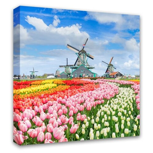 Картина Симфония Тюльпановое поле 30х30 см