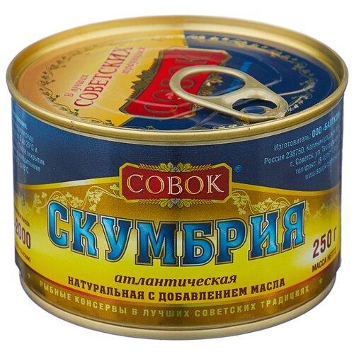 Совок Скумбрия атлантическая натуральная с добавлением масла, с ключом, 250 г рыбные консервы трал флот скумбрия атлантическая натуральная с добавлением масла 240 г