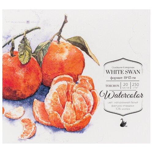 Альбом для акварели Малевичъ White Swan 19 х 17 см, 250 г/м², 20 л. альбом для акварели малевичъ white swan 24 х 23 см 250 г м² 20 л