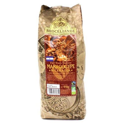 Кофе в зернах Broceliande Maragogype Никарагуа, арабика, 950 г фото