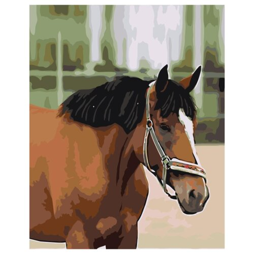 Гнедой конь Раскраска картина по номерам на холсте Z5742 40х50