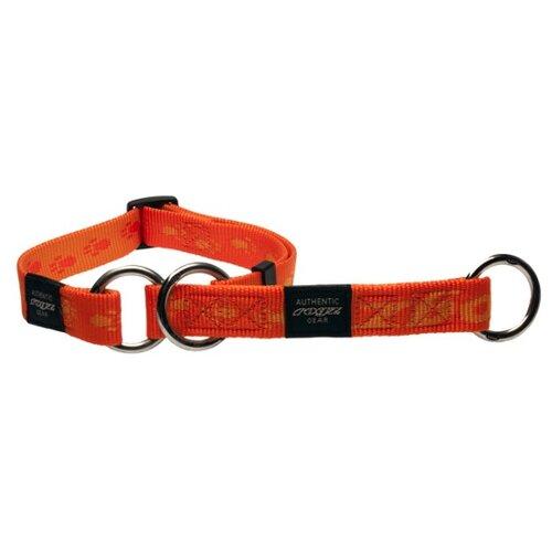 Ошейник-удавка Rogz Alpinist L (HBC25) 42-60 см оранжевый