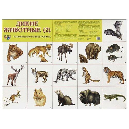 Купить Плакат Творческий Центр СФЕРА Дикие животные (2), Обучающие плакаты