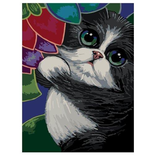 Купить Котик в саду Раскраска по номерам на холсте Живопись по номерам A375 30х40, Картины по номерам и контурам