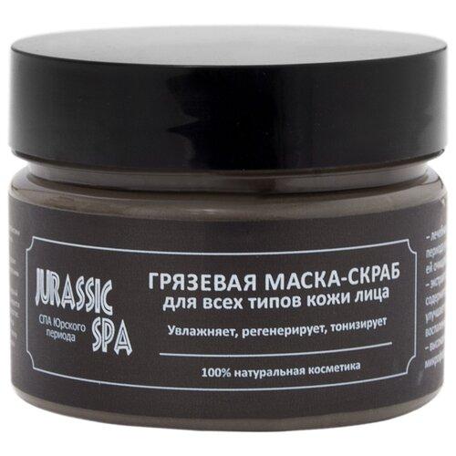 Jurassic SPA Маска-скраб Грязевая для всех типов кожи лица 100 мл jurassic spa крем для зрелой кожи лица фитоподтяжка и отбеливание 50 мл