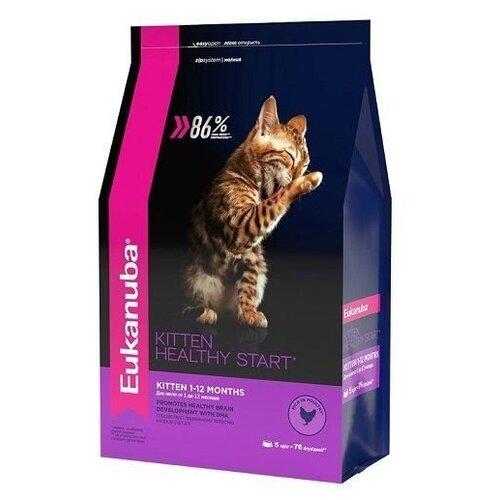 Корм для котят Eukanuba Healthy start с курицей 5 кг eukanuba сухой корм eukanuba kitten healthy start для котят беременных и кормящих кошек с курицей 400 г