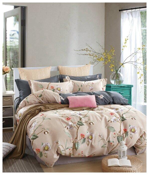Постельное белье Tango Twill 2 спальный наволочки 50x70 TPIG2-232-50