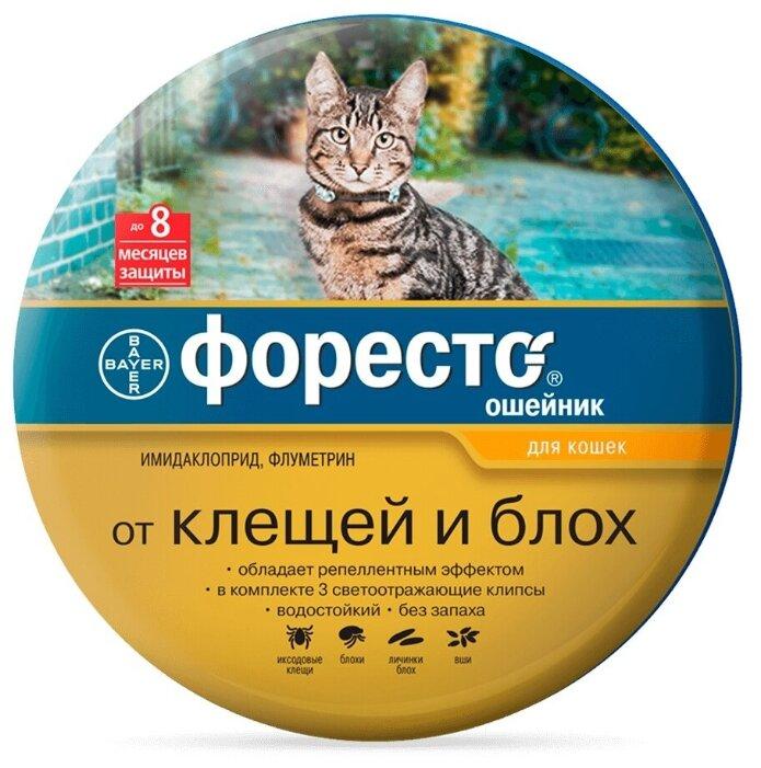 Купить Bayer Форесто Ошейник для котят и кошек, от клещей и блох (38 см) по низкой цене с доставкой из Яндекс.Маркета (бывший Беру)