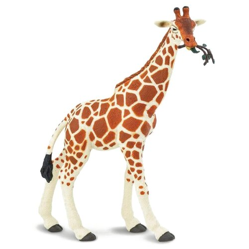 Фото - Фигурка Safari Ltd Wildlife Сетчатый жираф 268429 фигурка safari ltd wildlife детёныш жирафа 100422