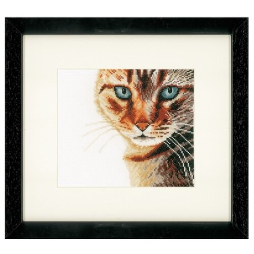 Купить Lanarte Набор для вышивания Cat Close-up 17 x 17 см (PN-0021202), Наборы для вышивания