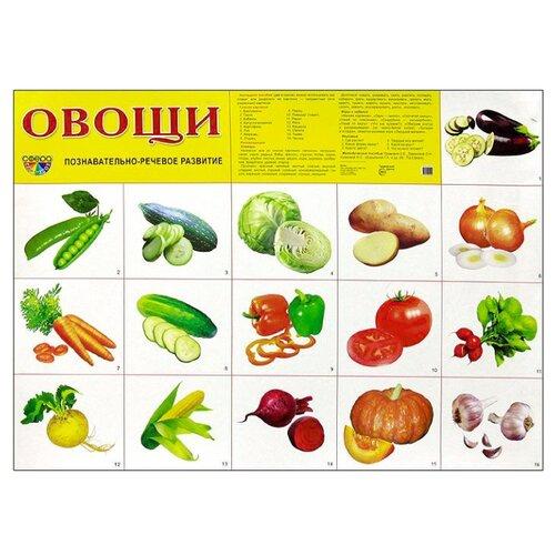 Купить Плакат Творческий Центр СФЕРА Овощи А2, Обучающие плакаты
