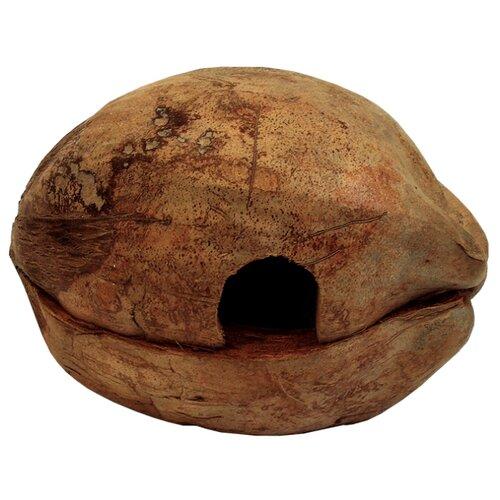 Грот Namiba Terra Домик для лягушек кокос 1 коричневый