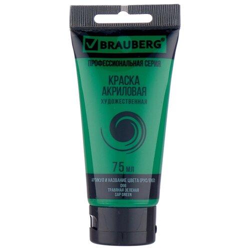 Купить BRAUBERG Краска акриловая художественная Профессиональная серия 75 мл травяная зеленая, Краски