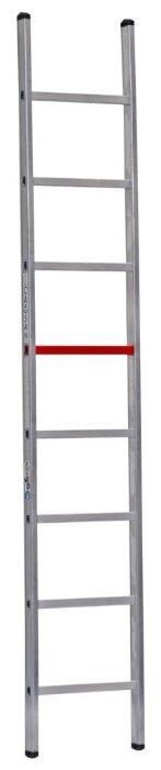Лестница приставная 1-секционная CAGSAN T6025