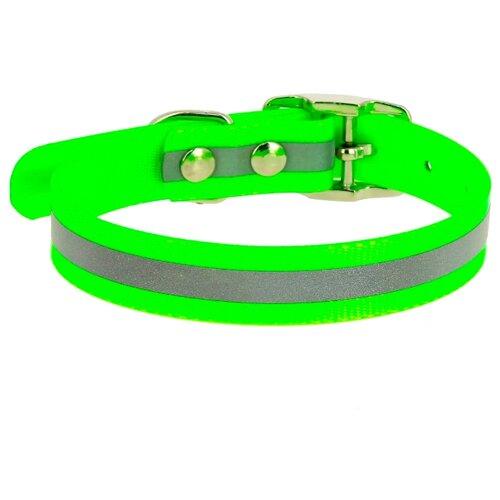 Ошейник КАСКАД Biotan (00215302) 21-30 см зеленый