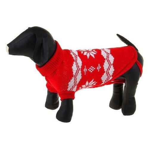 Свитер для собак Пижон размер 12 красный