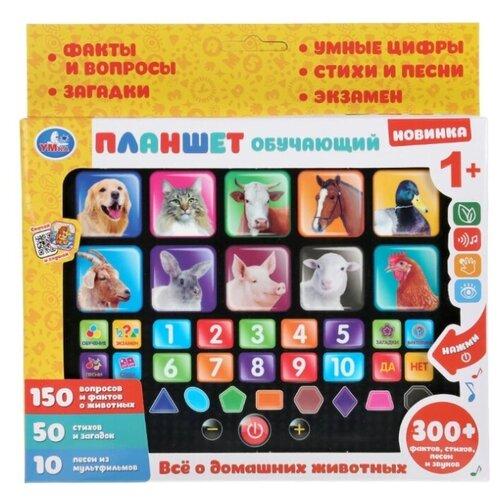 Планшет Умка Все о домашних животных HX82015-R38 желтый/серебристый планшет умка новогодняя азбука hx82015 r31 синий желтый