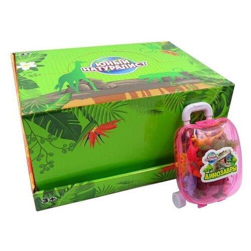 Купить Фигурки ABtoys Юный натуралист Динозавры в чемоданчике PT-01220/1, Игровые наборы и фигурки
