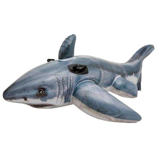 Купить Надувная игрушка-наездник Intex Акула 57525 серый, Надувные игрушки