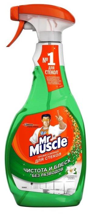 Спрей Mr. Muscle Профессионал для стекол с нашатырным спиртом