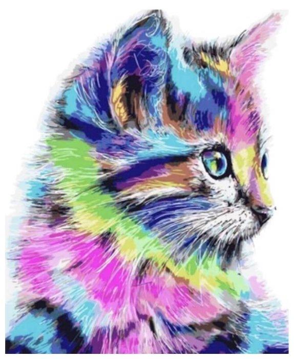 Цветной Набор алмазной вышивки Разноцветная кошка (LG009) 40х50 см