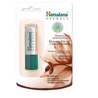 Himalaya Herbals Бальзам-стик для губ с маслом какао