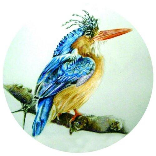 Купить Цветной Вышивка крестом Птица на ветке 21 х 21 см (VC06), Наборы для вышивания