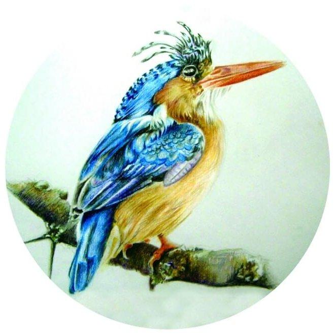 Цветной Вышивка крестом Птица на ветке 21 х 21 см (VC06)