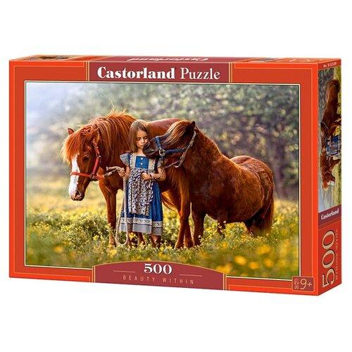 Купить Пазл Castorland Beauty Within (B-52509), 500 дет., Пазлы
