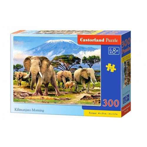 Купить Пазл Castorland Kilimanjaro Morning (В-030019), 300 дет., Пазлы