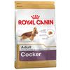 Корм для собак Royal Canin Коккер-спаниель для здоровья кожи и шерсти, курица 12 кг