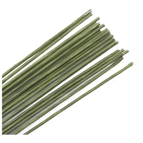 Купить Проволока для флористики диам.1, 60мм, 60 см, 50шт. Astra&Craft (зеленый), Astra & Craft, Фурнитура для украшений