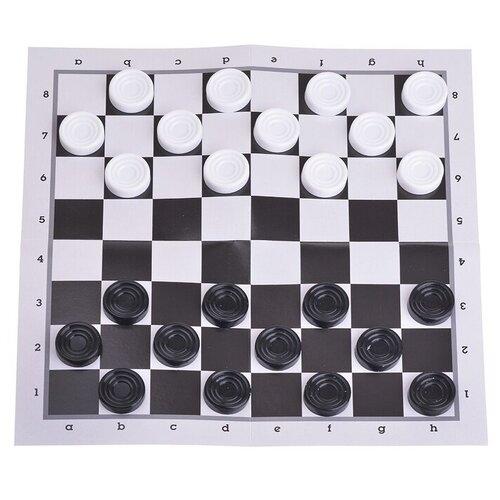 Цена Бум! Игра Шашки классические (07100)