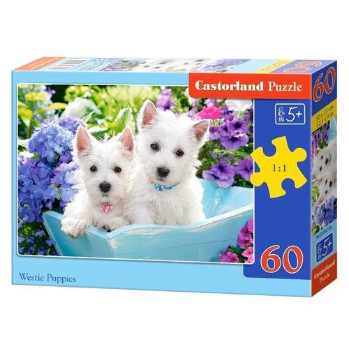 Пазл Castorland Белые щенки (B-066100), 60 дет. пазл castorland cute kittens b 066087 60 дет