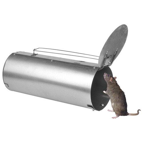 Крысоловка Клетка Круглая Макси Гранд, живоловка