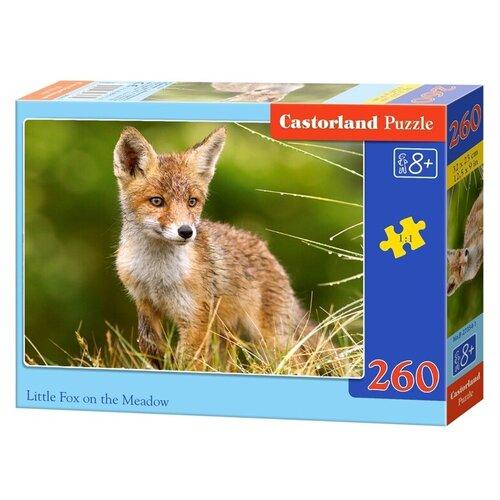 Пазл Castorland Little Fox on the Meadow (B-27354), 260 дет. пазл 260 эл санторо little song